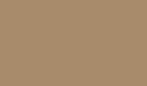 ShearArt_logo300x176