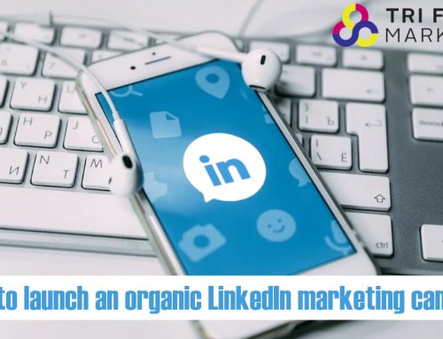 How to launch an organic LinkedIn marketing campaign