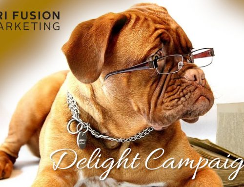 Delight Campaigns and Tips for Doing Your Own